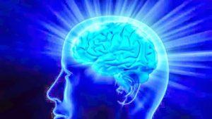 NAD Enhances Cognitive Capacity